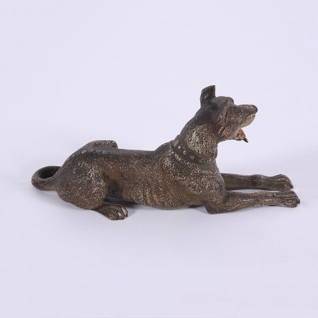 Franz Bergman Style Bronze Sculpture of Great Dane-37198b50-2950-47ea-808f-c2f960dab8f9.jpg