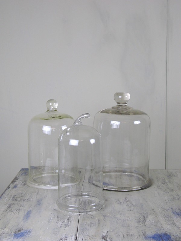 3 antique glass cloches-3m-decorative-antiques-img-5822-main-637198855644619945.jpg