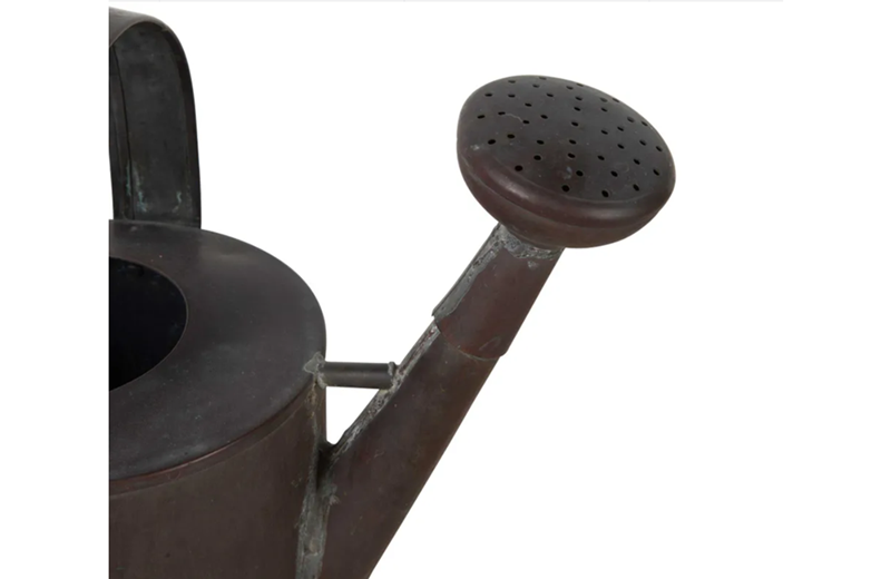 Copper watering can-adps-antiques-3405-4-copy-main-637098477982647526.png