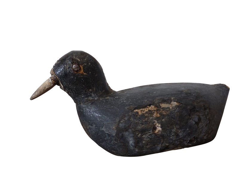 Antique coot decoy-adps-antiques-3549-view-3-main-637017559072019552.jpg