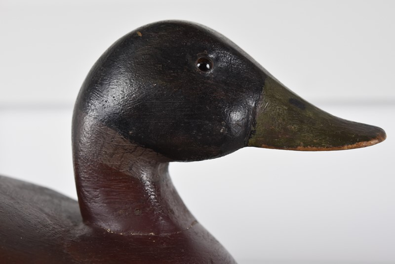 Decoy Duck-antiques-and-decorative-pic-2082-main-636799856021111366.jpg
