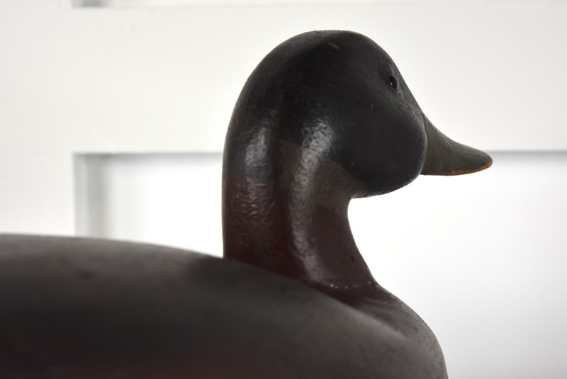 Decoy Duck-antiques-and-decorative-pic-2107-main-636799856522832165.jpg