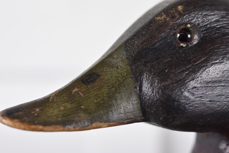 Decoy Duck-antiques-and-decorative-pic-2115-main-636799854557390813.jpg