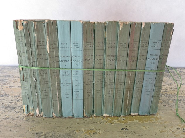 14 small French 19th c Green Books Printed 1883-appley-hoare-14GreenBooks_main_636559573138457806.jpg