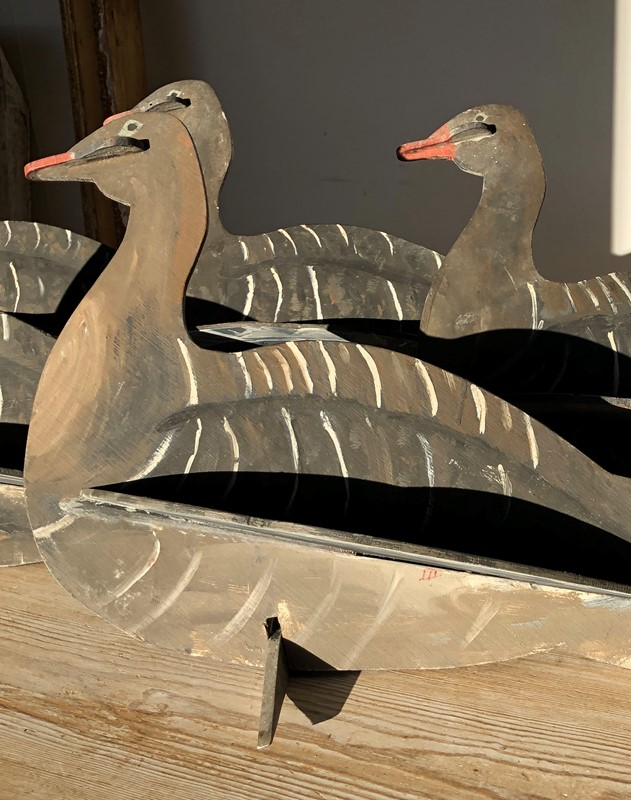 Set of English Decoy Geese - Circa 1940-appley-hoare-decoygeese3-main-637111664623151134.jpg