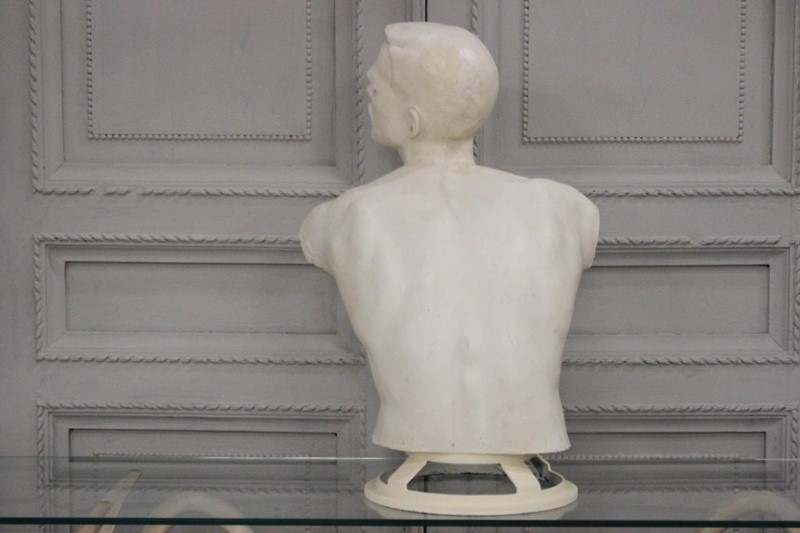 1950s French Fibreglass Bust of a Youth-brownrigg-1950s-french-fibreglass-bust-of-a-youth-5435-1-main-637069098557170307.jpeg