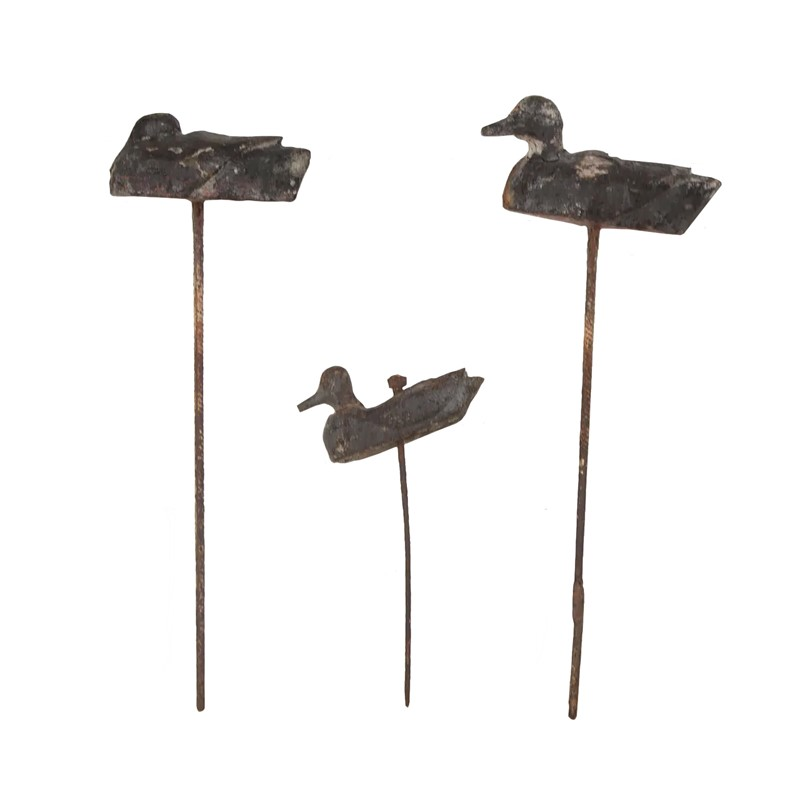 Collection of Wooden Decoy Ducks-christopher-hall-antiques-decoyducks-01-main-637060768049447278.jpg