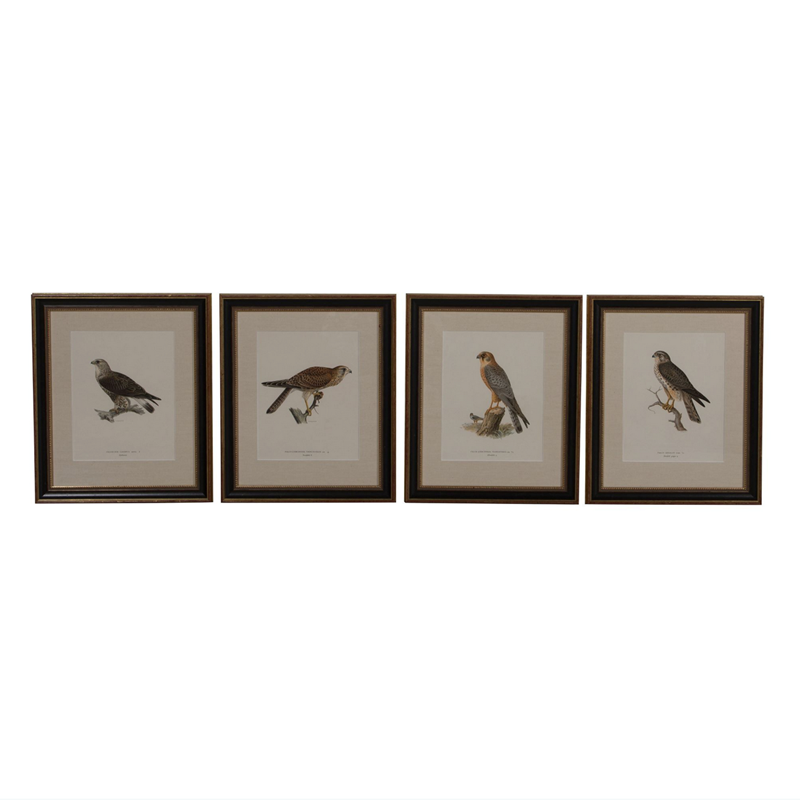 Set of 12 Chromolithographs of Birds of Prey-christopher-hall-antiques-screenshot-2019-06-30-201151-main-636975224133819879.png