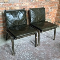 Large Quantity of Ren Dining Chairs