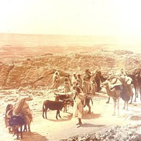 Panoramic Photograph of Camel Traders