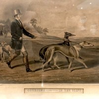 Pair of Coursing Prints