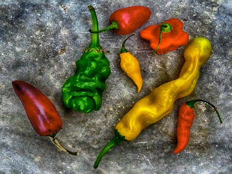 Chillies-dc-photography-jc2-chillies-main-637067663459629456.jpg