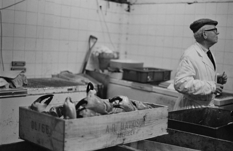 Billingsgate Fish Market 1981-dc-photography-sf1-billingsgate-1981-main-637068208139782616.jpg