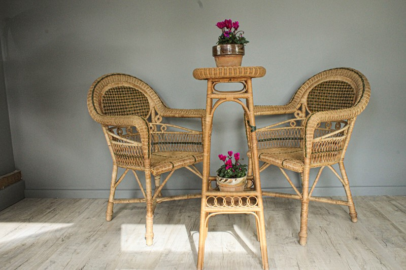 1950's Pair of Wicker Chairs and  Plant Stand-decorative-garden-antiques-img-4670-main-637401751674942779.jpg