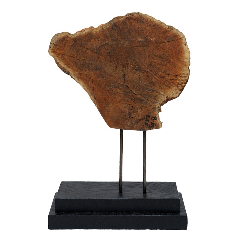 Mounted Sculptural Section of Burr Wood-decorator-source-untitled-2-main-637006907135412937.jpg