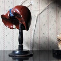 German Anatomical Model of a Liver on Stand c.1890