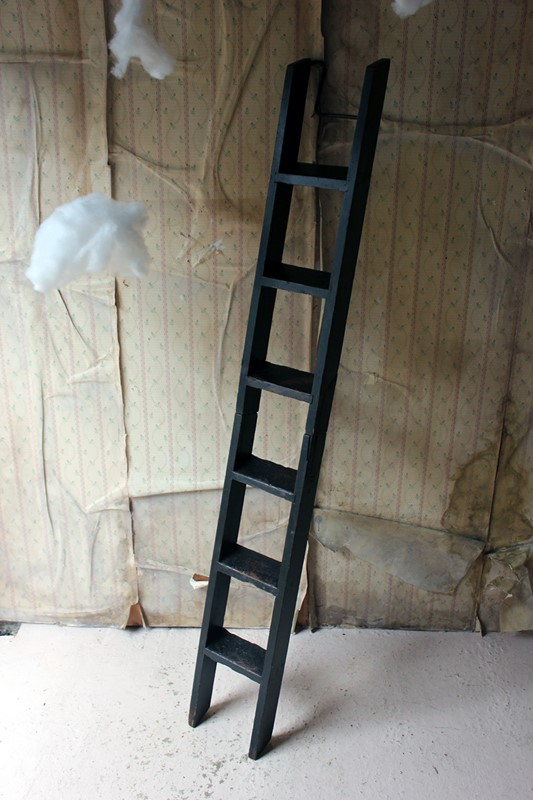 Victorian Painted Six-Tread Coaching Ladder c.1870-doe-and-hope-paintedcoachingladder20-main-636846254227490931.jpg