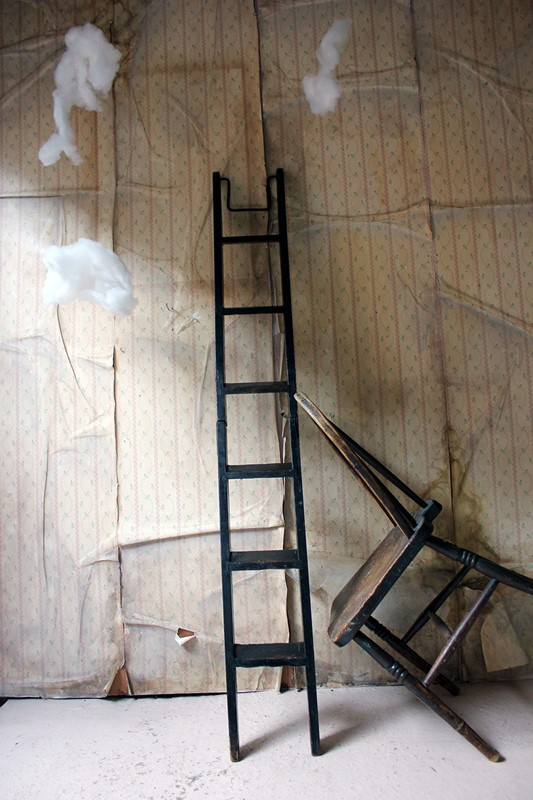 Victorian Painted Six-Tread Coaching Ladder c.1870-doe-and-hope-paintedcoachingladder23-main-636846255022395586.jpg