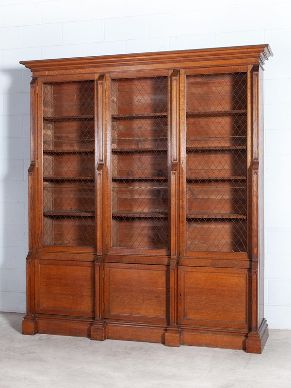 19th Century Gothic Bookcase-drew-pritchard--mg-7671-main-637172910723022933.jpg