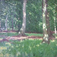 Oil on board Burnham Beeches signed