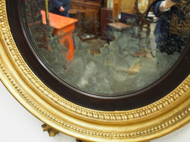 Regency Carved and Gilded Convex Mirror-georgian-antiques-PB061332_main_636467807254213144.JPG