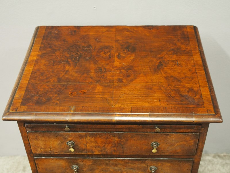 Georgian Style Walnut Dressing Chest / Side Table-georgian-antiques-p9253537-main-637405250501407592.JPG