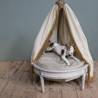 Painted  Cat/Dog Bed with canopy