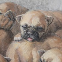 1945 watercolour of sleeping puppies