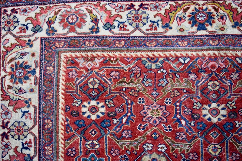 Pretty Mahal carpet of small proportions-joshua-lumley-ltd-DSC_0375-main-636598239083518721.jpg