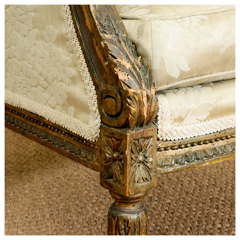 A 19th century giltwood arm chair-leslie-baggott-c10679-4-main-636992219362576227.jpg