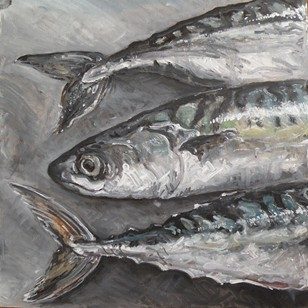 Oil study of mackerel