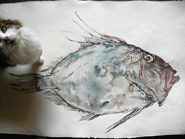 Large Watercolour of a John Dory (1)-mountain-cow-DSCN9261_main_636456752445705447.jpg