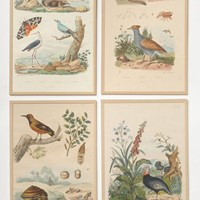 Antique French prints