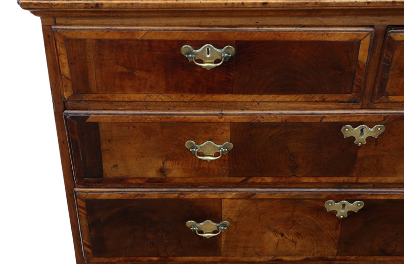Georgian oyster walnut fruitwood chest of drawers-prior-willis-antiques-7718-6-main-637421826948649449.jpg