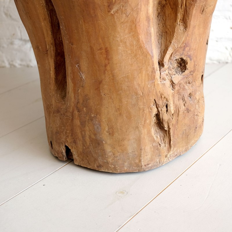 Sculptural Tree Trunk-puckhaber-decorative-antiques-tree-trunk-planter-5-main-637323257700194061.jpg
