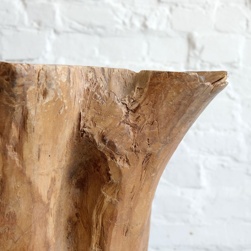 Sculptural Tree Trunk-puckhaber-decorative-antiques-tree-trunk-planter-6-main-637323257724098201.jpg