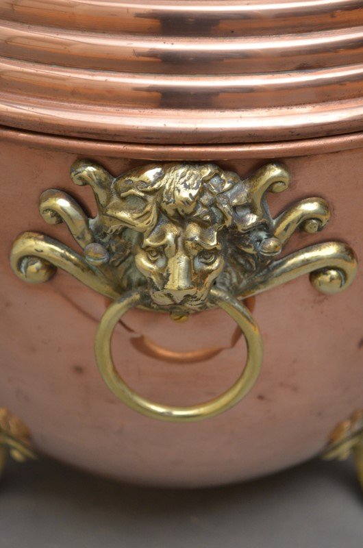 19th Century Copper Coal Scuttle or Planter -spinka-co-3-main-637052704066059996.JPG