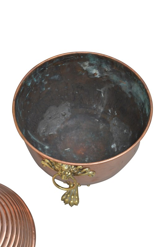 19th Century Copper Coal Scuttle or Planter -spinka-co-5-image-editing-indias-conflicted-copy-2019-05-30-main-637052704106841226.jpg