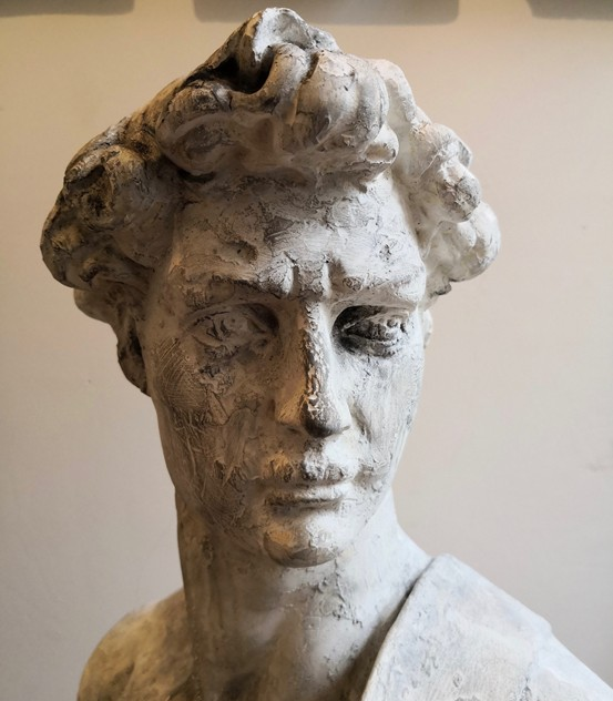 A plaster bust of David-tales-from-the-rookery-IMG_20180307_092739_main_636560151656835838.jpg