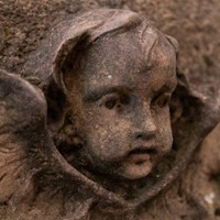 Antique carved red sandstone cherubs