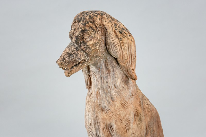 Large Life size Terracotta Afghan Hound Statue-the-home-bothy-afgan-hound-terracotta-2358-3-main-637423408147306847.jpg
