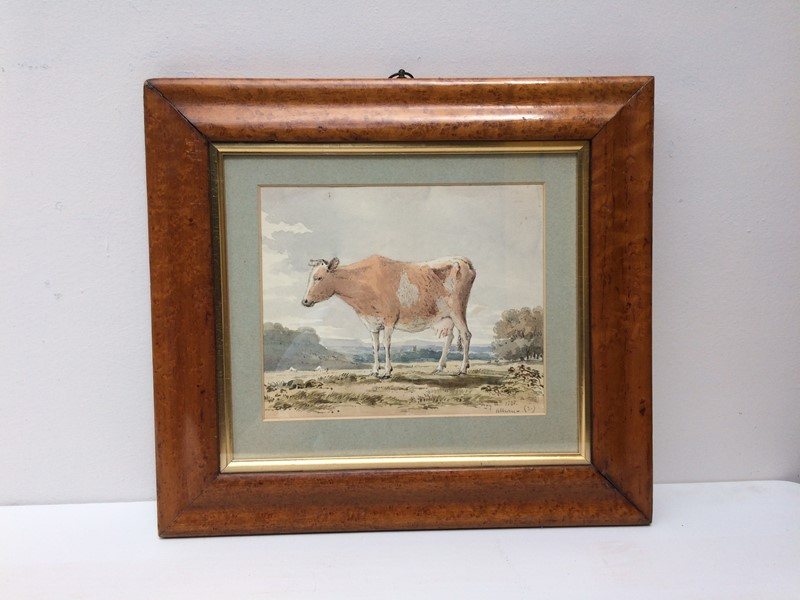 Cow Watercolour-the-lacquer-chest-img-9153-main-636978476578430014.jpg