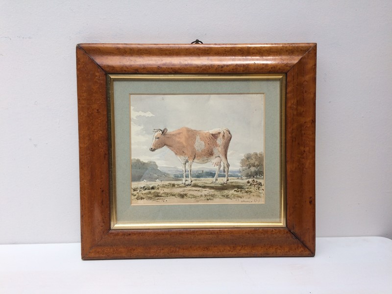 Cow Watercolour-the-lacquer-chest-img-9154-main-636978476335776478.jpg