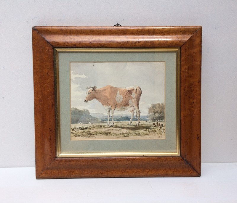 Cow Watercolour-the-lacquer-chest-img-9154-main-636978476598273173.jpg