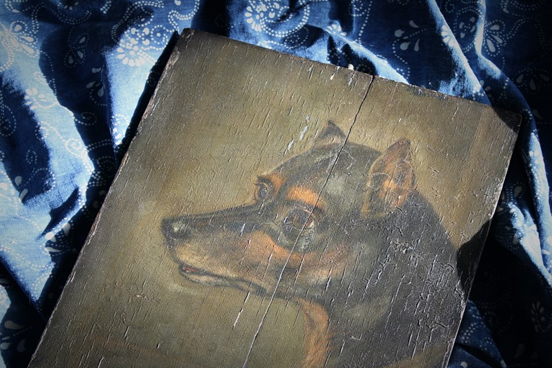 19th Century Oil on Board, English Toy Terrier -the-school-for-scandal-img-7193-fotor-main-637165309403006978.jpg