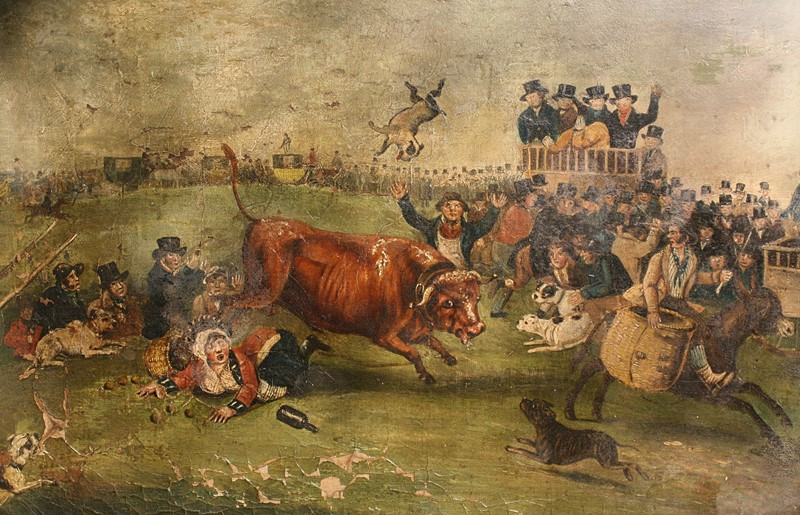 """Bull Broke Loose"", Bull Baiting Oil on Canvas -the-school-for-scandal-img-8653-fotor-main-636901700747605947.jpg"