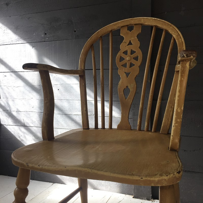 Windsor Chair-tigers-decorative-A9265EB1-AE0D-477D-BFD6-058152251862-main-636732542254832344.jpeg