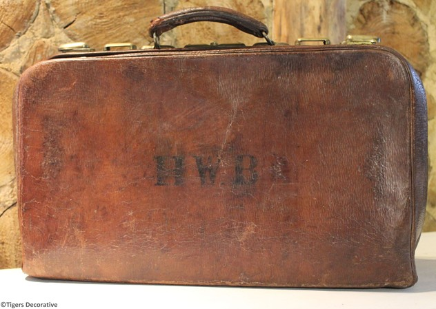 Vintage Leather Suitcase-tigers-decorative-IMG_8822_main_636320083571253876.jpg