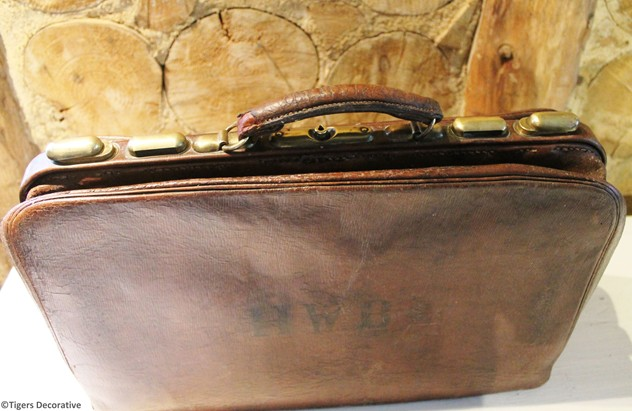 Vintage Leather Suitcase-tigers-decorative-IMG_8824_main_636320084554260284.jpg