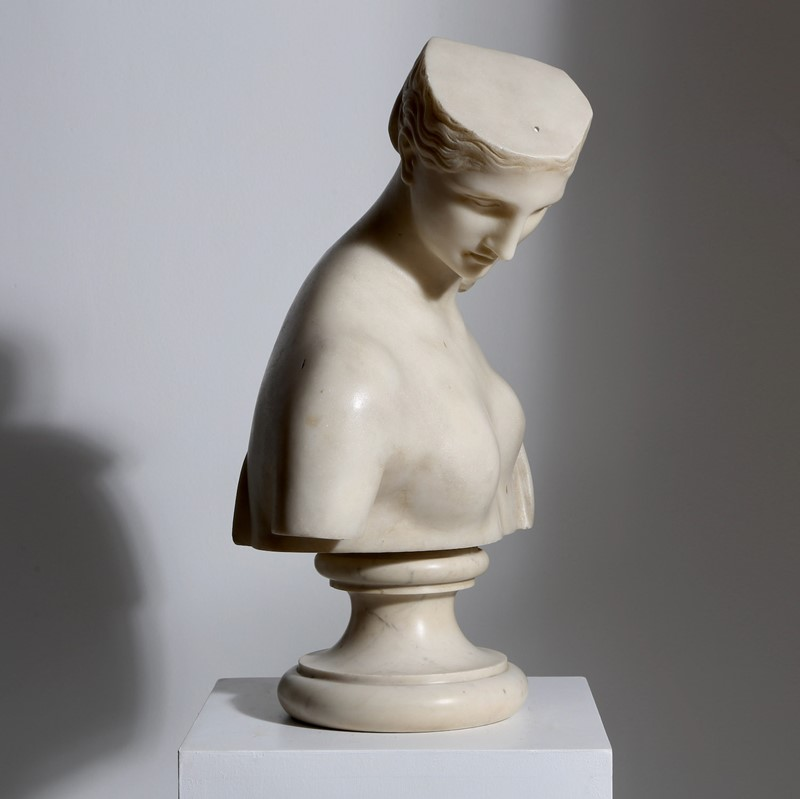 Marble Bust of Psyche-vagabond-psyche-3-main-637361906189715237.jpg